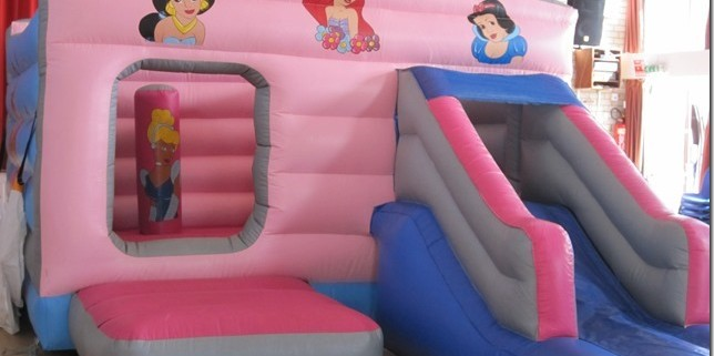 princess slide on the front 12x 17x 8 £70