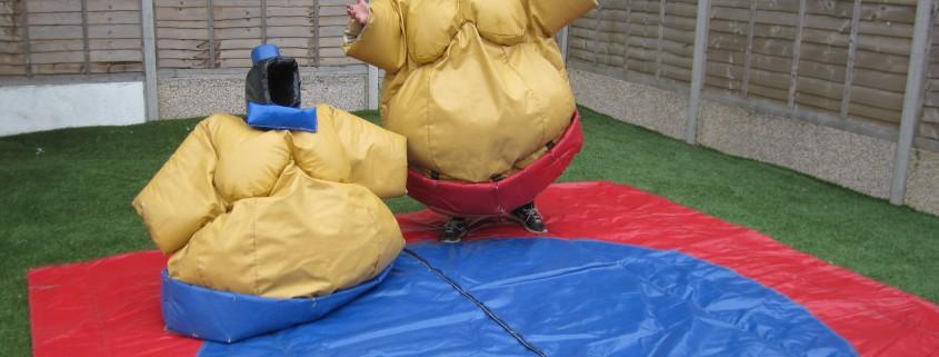 adult sumo