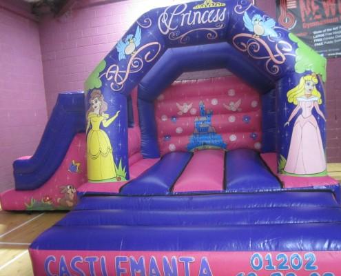 princess slide
