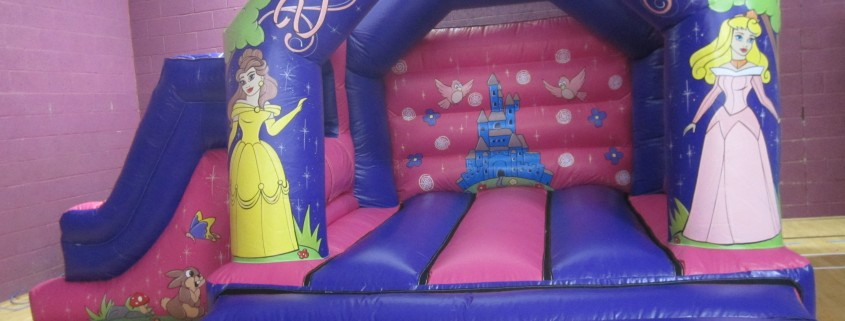 princess slide
